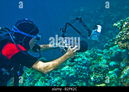 girl woman she DIVER underwater photographer taking pictures camera small compact tight diver dive pink lilac lila - Stock Photo