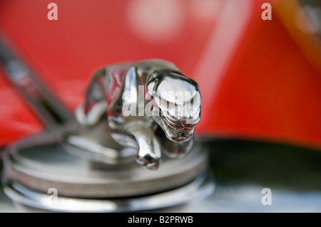 Closeup of a Jaguar mascot on a red Mark 4 from 1945-1949 - Stock Photo