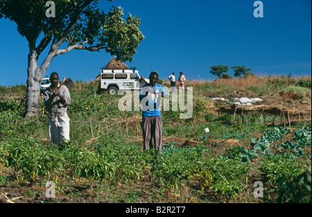 Agriculture in Angola. - Stock Photo