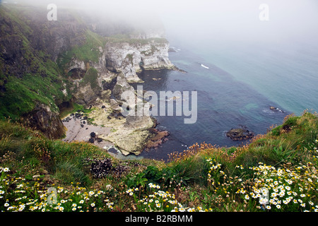 Sea Mist at White Rocks on the Antrim Coast near Portrush County Antrim Northern Ireland UK - Stock Photo