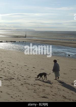 woman walking dog on beach in rhyl north wales - Stock Photo