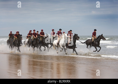 Household Cavalry at Holkham Beach Norfolk - Stock Photo