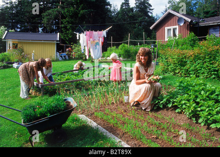 Mother and daughters picking potatoes from family garden in rural Sweden - Stock Photo
