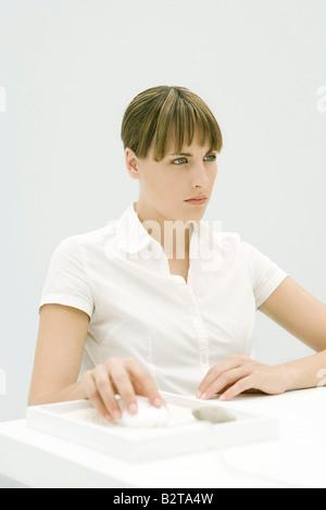 Woman using computer mouse in desktop rock garden - Stock Photo