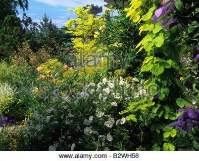 Brownshill gloucestershire design pamela woods very for Garden design gloucestershire