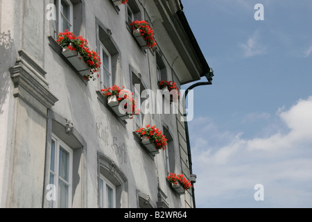 Typical traditional red flowerboxes on the windowsills of a building in Lucerne, Central Switzerland - Stock Photo