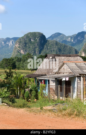 Traditional wooden houses with steep limestone mogotes in the distance in the Viñales valley Cuba - Stock Photo