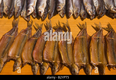 Omur fish fresh ready to buy in beautiful at listvyanka in for Where to buy fish near me