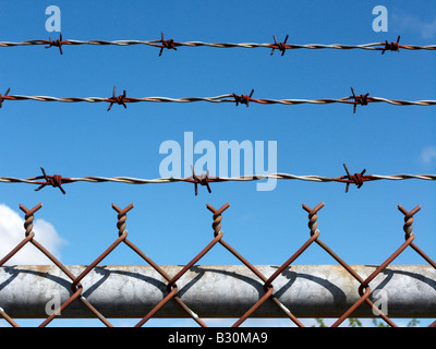 Barbed wire Barbwire - Stock Photo