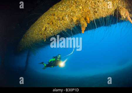 Diver at massive 16 inch 45 Caliber Gun under the HIJMS Nagato Battleship Marshall Islands Bikini Atoll Micronesia - Stock Photo