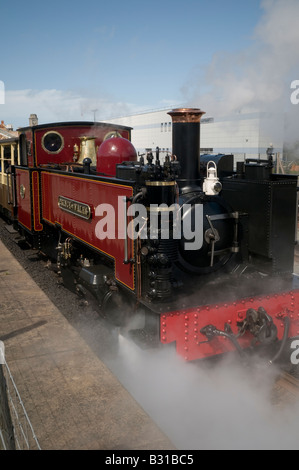Vale of Rheidol narrow gauge steam railway train leaving the station Aberystwyth  UK;  one of the great little trains - Stock Photo