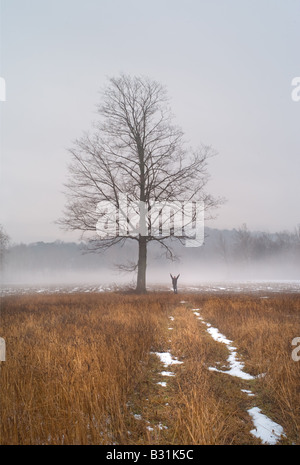 Figure raises arms with joy in a misty landscape with ethereal tree - Stock Photo