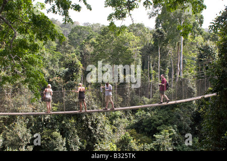 People on the 40 metre high canopy walk at Kakum National Park Ghana - Stock Photo