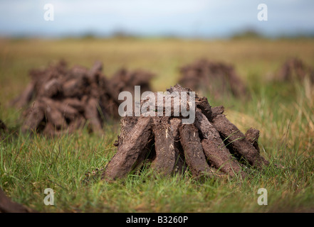 peat turf fuel already cut piled up in stacks air drying on the wet bog in county sligo republic of ireland - Stock Photo