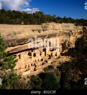 CLIFF PALACE, THE LARGEST ANASAZI CLIFF DWELLING IN MESA VERDE NATIONAL PARK, NEW MEXICO, USA - Stock Photo