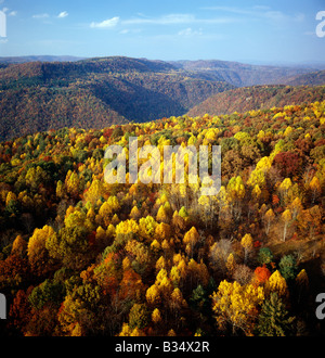 Aerial of Bluestone River Gorge by Pipestem Resort State Park, Virginia, USA, in autumn - Stock Photo