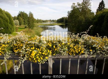 Yellow flowers blooming on bridge parapet , Finland - Stock Photo