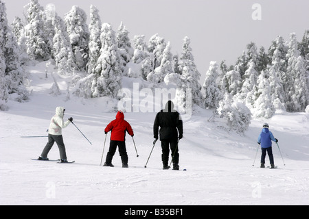 A family is skiing downhill during extreme cold weather - Stock Photo