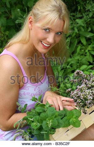young blond woman picking herbs in the garden - Stock Photo