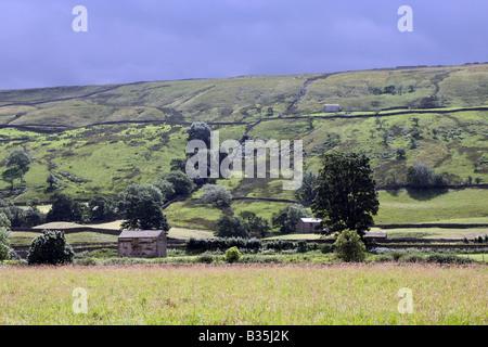 Field barns in Upper Swaledale