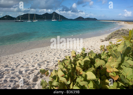 Cruising sailboats anchored next to Sandy Island Carriacou Grenada. Sandy Island is a sandy strip just meters wide - Stock Photo