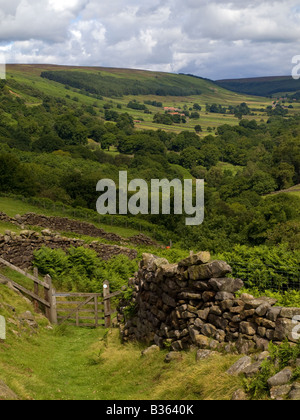 Bransdale North York Moors National Park - Stock Photo