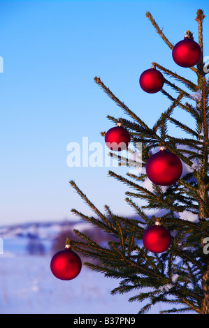 Peaceful nature vintage background stock photo 71302724 for Outside christmas baubles