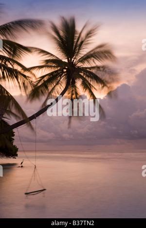 Rope swing at dusk on South Ari Atoll in Maldives near India - Stock Photo