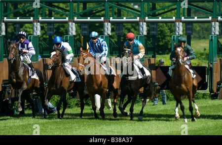 start of a horse race - Stock Photo
