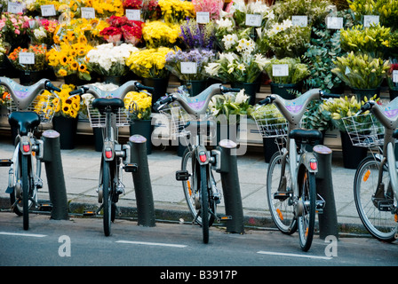 Velib bicycles in front of a florist stand in Paris - Stock Photo