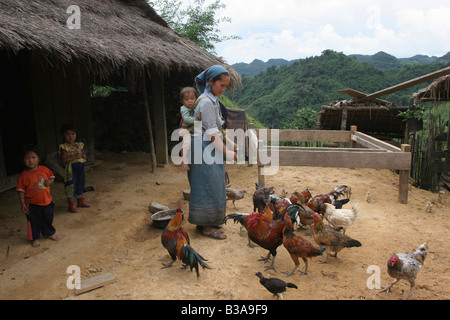 Nong Het district, Xieng Khouang province, Laos. A young mother feeds her chickens. - Stock Photo