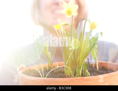 A woman admiring her daffodils - Stock Photo