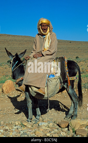 Morocco, Anti-Atlas Mountains. A Berber man pauses on his mule on the way to his home village. - Stock Photo