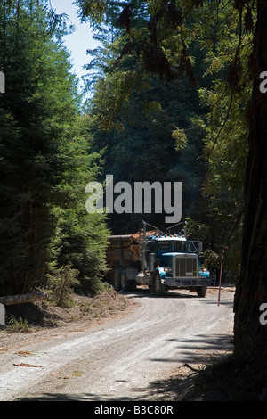 Fort Bragg California Logging of redwoods in northern California A truck hauls logs to a sawmill