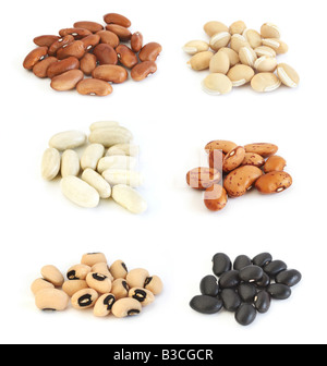 Assortment of different types of beans: red kidney, hyacinth, white (cannelini), pinto, black beans and black eyed - Stock Photo