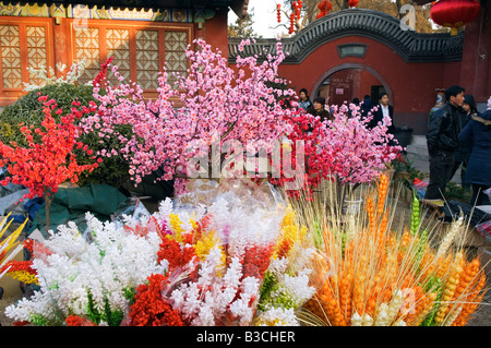 China, Beijing. Chinese New Year Spring Festival - a flower display at Ditan Park temple fair.