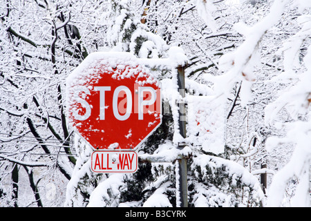 Snow covered traffic stop sign in residential area in Toronto during snowstorm - Stock Photo