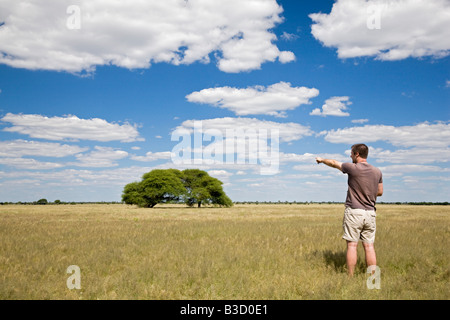 Africa, Botswana, Tourist looking at the landscape - Stock Photo