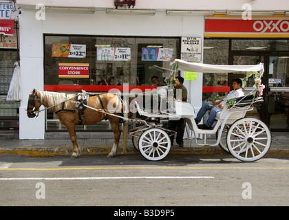 Horse and Carriage Taxi, Merida, Yucatan Peninsular, Mexico. - Stock Photo