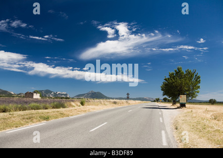 Provence Country road near Valensole. France - Stock Photo