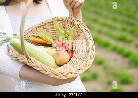 Woman holding vegetables basket - Stock Photo