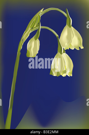 illutration of a flower in a blue background - Stock Photo