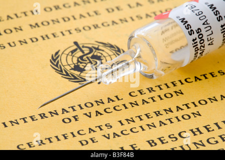 Syringe on international certificates of vaccination of the World Health Organization WHO - Stock Photo