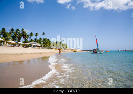 Stunning Pinneys beach with Coconut Palms at the Four Seasons Hotel in Nevis Caribbean - Stock Photo