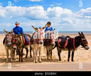 Small boy sitting on a donkey at Skegness Beach, Lincolnshire, England, UK - Stock Photo
