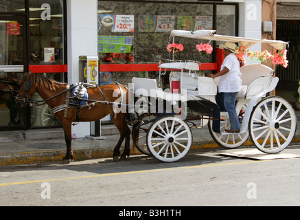 Horse and Carriage Taxi, Merida, Yucatan Peninsular, Mexico - Stock Photo