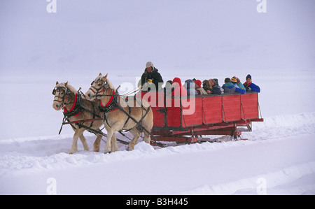 A horse drawn sleigh carries visitors through the snowy landscape of the National Elk Refuge near Jackson - Stock Photo