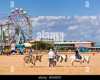 Children riding donkeys on Skegness beach, Lincolnshire, England, UK - Stock Photo