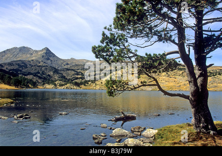 Pyrenees mountain lake - Massif of Carlit seen across the Lac des Bouillouses, Pyrenees-Orientales, Languedoc-Roussillon, - Stock Photo