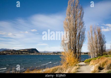 Wanaka Otago South Island New Zealand May Southern end of Lake Wanaka lakeside footpath on western shore in autumn - Stock Photo